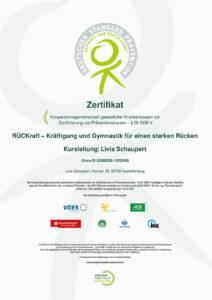 Zertifikat: Rückentraining